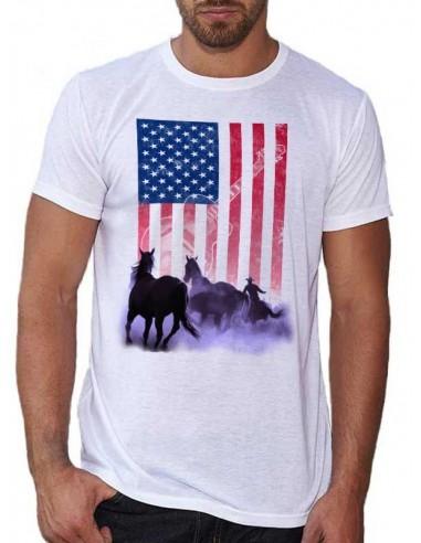 Cavalier et chevaux