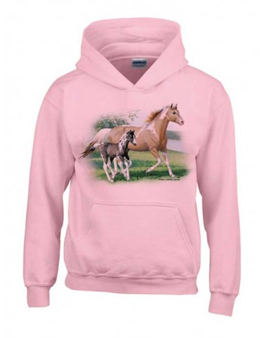 Sweat Shirt Enfant - Jument et son Poulain